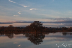 Severnside Reflections