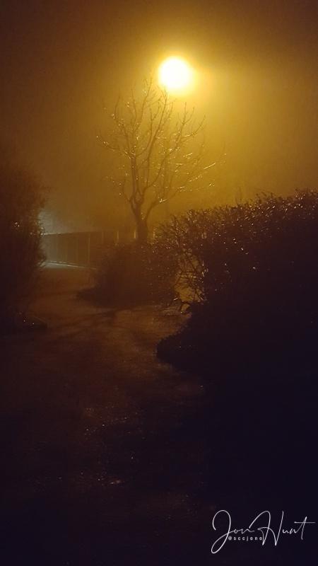 Night Light II
